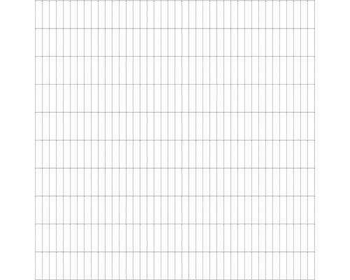 Doppelstabmatte 6/5/6 200x200 cm feuerverzinkt