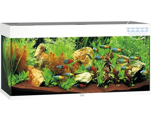 Aquarium Juwel Rio 240 Mit Led Beleuchtung Pumpe Filter Heizer Ohne Unterschrank Weiss Bei Hornbach Kaufen