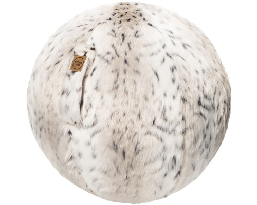 Sitzball Sitting Ball Skins Schneeluchs Ø 65 cm