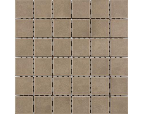 Keramikmosaik für die Dusche R10B cappuccino glasiert 30x30 cm