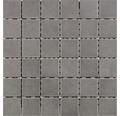 Keramikmosaik für die Dusche R10B grau glasiert 30x30 cm