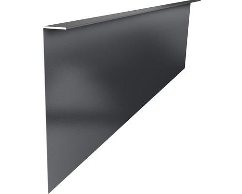 Seitenverblendungsprofil RAL 9007 1900x180x2 mm