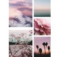Leinwandbild Soft Blush 5er Set