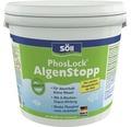 PhosLock AlgenStopp Söll 10 kg