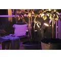 Philips hue LED Spot 1er White & Color Ambiance 8W 600 lm 2000-6500 K Lily Basis Set schwarz - Kompatibel mit SMART HOME by hornbach