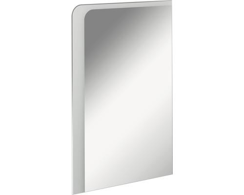 LED Badspiegelelement FACKELMANN Milano 55x80 cm 11,8 W