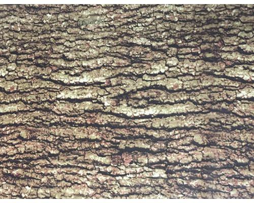 Wassertransferdruck Folie Camouflage CA-R-004 50 x 10000 cm