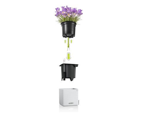 Blumentopf Lechuza Cube Color Kunststoff 16x16x16 cm weiß inkl. Erdbewässerungsystem und Pflanzeinsatz