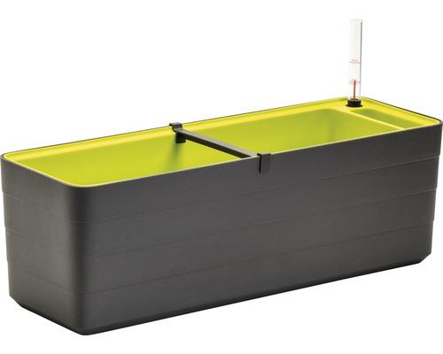 Blumenkasten Lafiora Kunststoff 60x19,5x20 cm anthrazit-grün inkl. Erdbewässerungssystem und Wasserstandsanzeiger