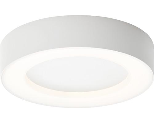 LED Außendeckenleuchte IP44 13,7W 1000 lm 3000 K warmweiß HxØ 45x200 mm Whittaker weiß 1-flammig