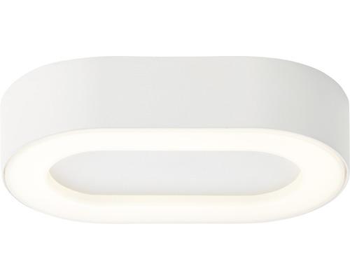 LED Außendeckenleuchte IP44 13,7W 1100 lm 3000 K warmweiß HxBxL 45x200x120 mm Whittaker oval weiß 1-flammig