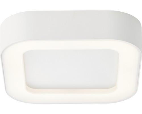 LED Außendeckenleuchte IP44 13,6W 1100 lm 3000 K warmweiß HxBxL 45x200x200 mm Whittaker eckig weiß 1-flammig