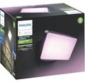 Philips hue LED Flutlicht Discover White & Color Ambiance 15W 2300 lm schwarz 153x220 mm - Kompatibel mit SMART HOME by hornbach