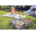 Enders Holzkohlegrill Picknickgrill Dallas 2.0