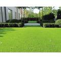 Kunstrasen Arizona mit Drainage grün 400 cm breit (Meterware)