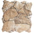 Feinsteinzeug Verblendstein Klimex UltraStrong Nevada braun 31,5x31,5 cm