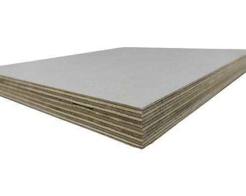 Multiplexplatte Birke lichtgrau 2500x1250x18 mm