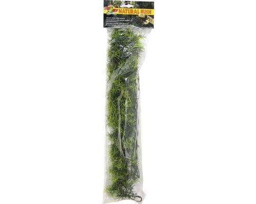 Kunststoffpflanze ZOO MED Cashuarina Large
