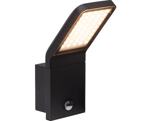 LED Sensor Außenwandleuchte IP44 9W 600 lm 3000 K warmweiß HxTxB 256x165x100 mm Pepillo schwarz Alu/Glas