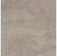 Feinsteinzeug Wand- und Bodenfliese Udine Beige-Grau unglasiert 60 x 60 cm