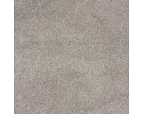 Wand- und Bodenfliese Udine Beige-Grau unglasiert 60 x 60 cm