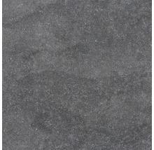 Feinsteinzeug Wand- und Bodenfliese Udine Schwarz unglasiert 60 x 60 cm