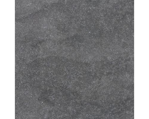 Wand- und Bodenfliese Udine Schwarz unglasiert 60 x 60 cm