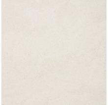 Feinsteinzeug Wand- und Bodenfliese Udine elfenbein unglasiert 60 x 60 cm