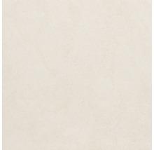 Feinsteinzeug Wand- und Bodenfliese Udine elfenbein unglasiert 80 x 80 cm