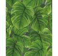 Vliestapete 810707 Blätter grün