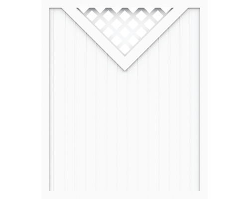 Sichtschutzelement Basic Line Typ B Weiß 180 x 180 x 4,8 cm