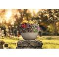 Blumenschale Cubeto Stone Kunststoff 40x40x18 cm sandbeige inkl. Erdbewässerungsystem und Wasserstandsanzeiger