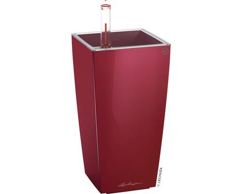 Pflanzvase Lechuza Mini Cubi scarlet rot H 18 cm rot