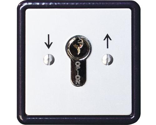 Schlüsselschalter GAH Alberts Unterputz für Schiebetor Lektor