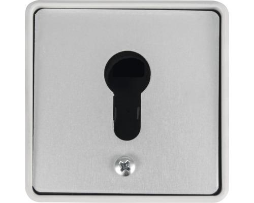 Schlüsselschalter GAH Alberts Aufputz für E-Schiebetor Mosaik