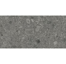 Feinsteinzeug Wand- und Bodenfliese Terrazzo Donau grau30 x 60 cm Rektifiziert