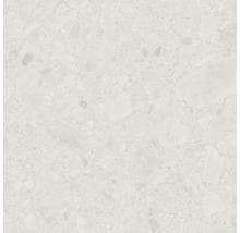 Feinsteinzeug Wand- und Bodenfliese Terrazzo Donau beige 60 x 60 cm Rektifiziert