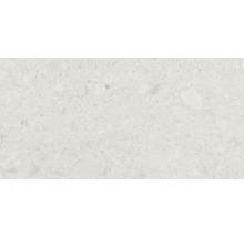 Feinsteinzeug Wand- und Bodenfliese Terrazzo Donau beige 30 x 60 cm Rektifiziert