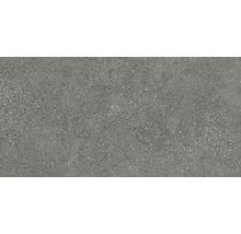 Feinsteinzeug Wand- und Bodenfliese Alpen grau30 x 60 cm Rektifiziert