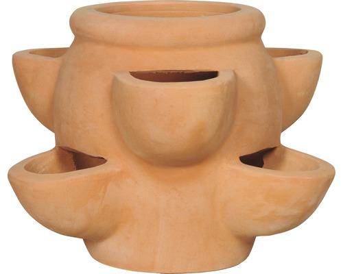 Erdbeertopf Terrakotta Ø 36 H 26 cm terrakotta