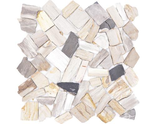 Natursteinmosaik Bruch/Ciot mix wood stone fossil
