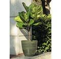 Pflanztopf Lafiora Balas D 28 x H 26 cm grün