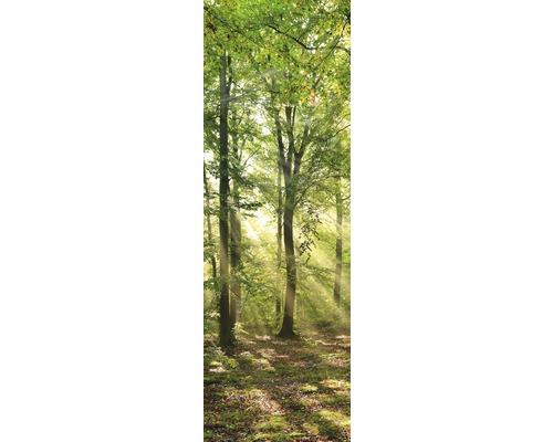 papermoon Bildheizung Infrarot Glas Wald Morgensonne 40 x 120 cm 500W