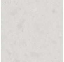 Feinsteinzeug Wand- und Bodenfliese Terrazzo Donau weiß 60 x 60 cm Rektifiziert
