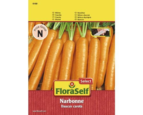 Möhre 'Narbonne' Saatband Gemüsesamen