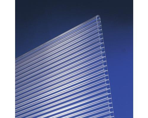 Polycarbonat Hohlkammerplatte Glasklar 2500x1050x10 mm