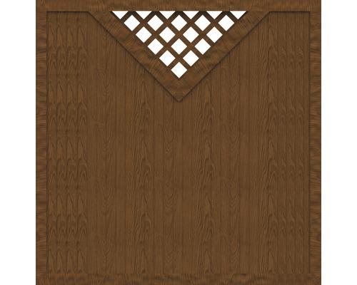 Sichtschutzelement Basic Line Typ B  Golden Oak 180 x 180 x 4,8 cm