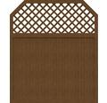 Sichtschutzelement Basic Line Typ I Golden Oak 180 x 210/180 x 4,8 cm