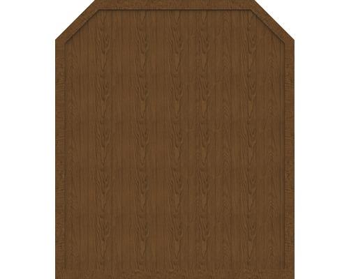 Sichtschutzelement Basic Line Typ J Golden Oak 180 x 210/180 x 4,8 cm