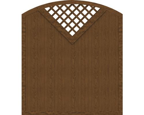 Sichtschutzelement Basic Line Typ G Golden Oak 180 x 205/180 x 4,8 cm